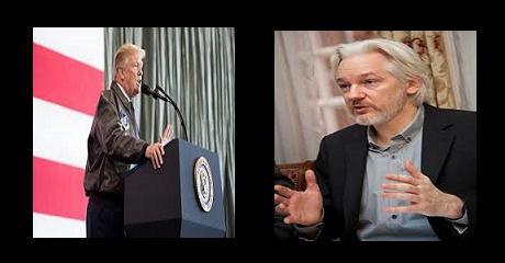 assange-trump