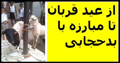 eid-e-ghorban