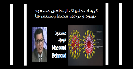 masoud-behnoud-corona