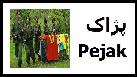 pejak3.png