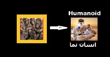 primates-to-humanoids
