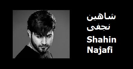 shahin-najafi
