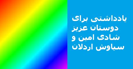 siavash-ardalan-shadi-amin