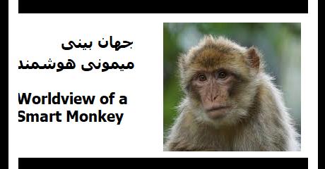 smart-monkey-worldview